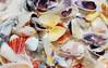colorful clams (wkepkake1) Tags: ocean seagulls macro beach pelicans nature closeup seashells florida driftwood barnacles crabs sandpiper navarre willet seasnail