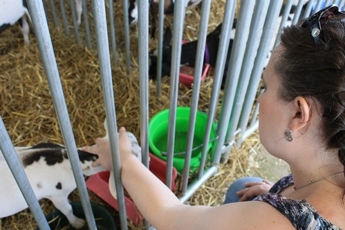 i heart tiny goats
