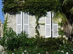 Windows in Avignon (France 2011) (paularps) Tags: travel holiday france nature lumix vakantie europe flickr wine culture panasonic leisure reizen flickrcom destinations 2011 vakantiefotos adventuretravel paularps