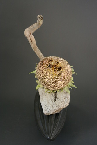 Ikebana with driftwood and sunflower