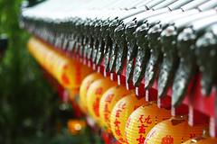 (nodie26) Tags: color building temple faith religion palace temples