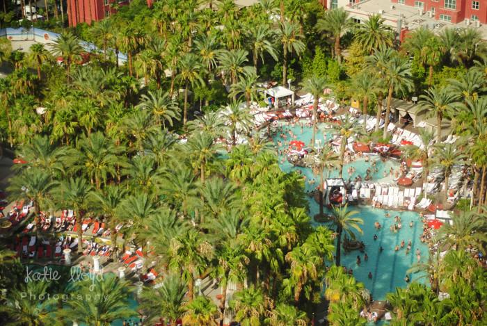 LV---Pool-View