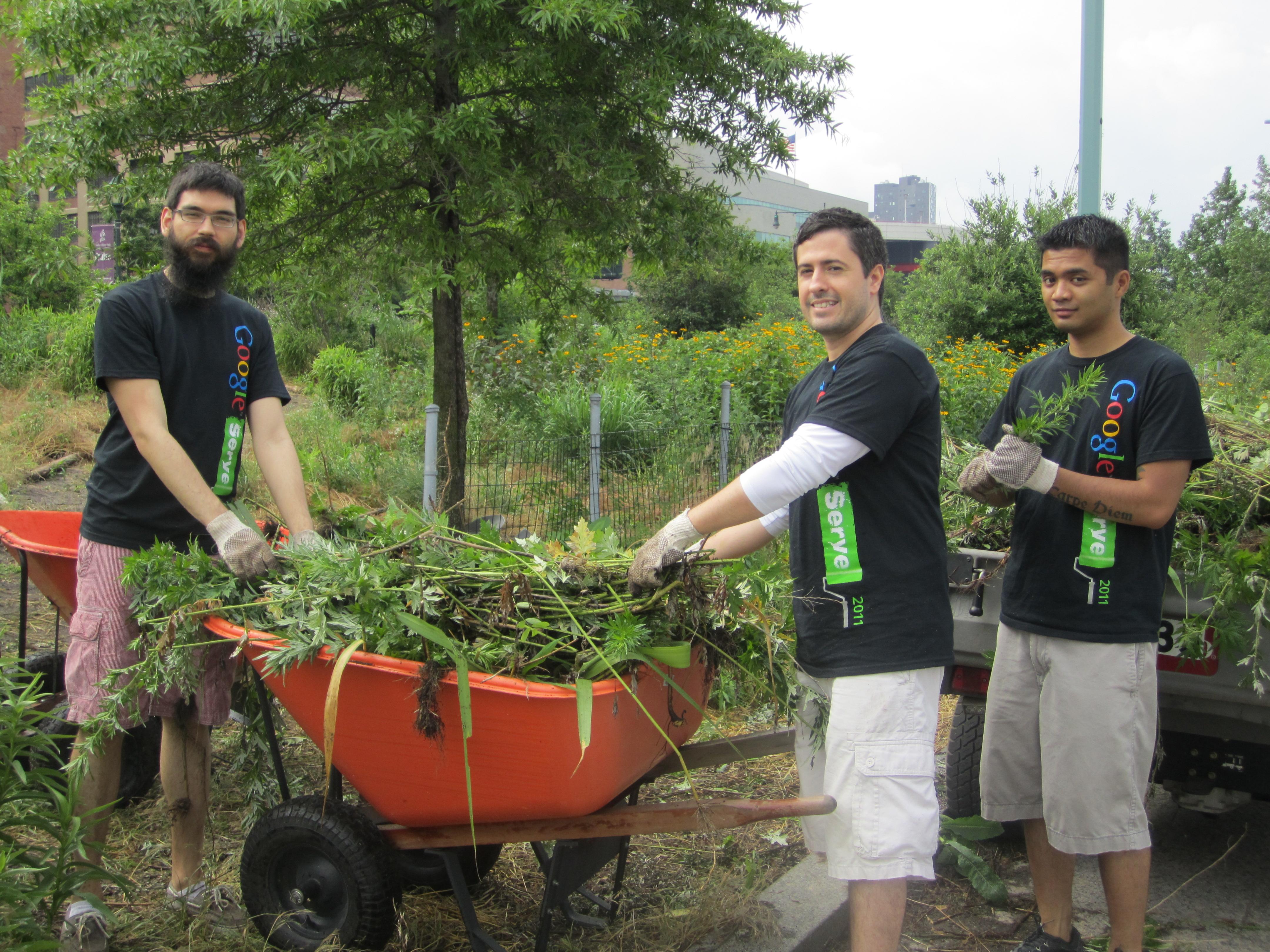 Google Serve 2011 volunteers in NYC
