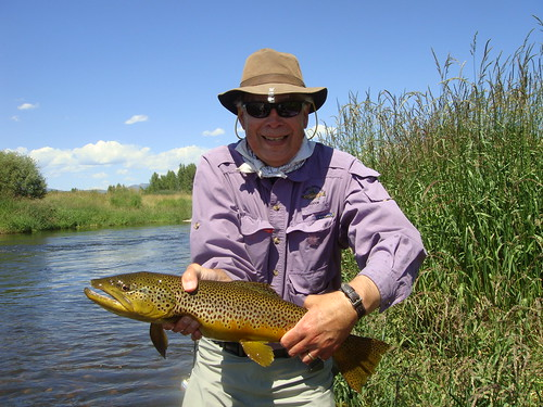 Yampa River, CO Fly Fishing for Brown Trout