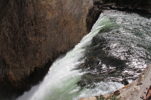 Yellowstone with Pa 049