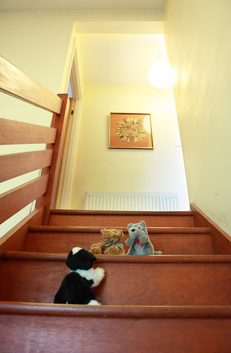 The toys tackle the stairs by Helen in Wales