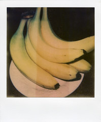 Bananas (Nick Leonard) Tags: stilllife food white black film yellow fruit analog polaroid lasvegas nevada nick plate scan indoors bananas simple manualfocus landcamera polaroidsx70 foodphotography polaroidlandcamera instantfilm epson4490 flashbar firstflush colorshade integralfilm nickleonard polaroidsx70model2 theimpossibleproject ndpackfilter px680 px680ff