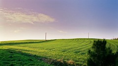 Lignes vertes... (Nath...*) Tags: panorama nature french