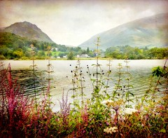 Walking Around Lake Grasmere (vesna1962) Tags: england lake mountains texture nature landscape scenery village grasmere lakedistrict cumbria fells wildflowers thelakes latesummer artistictreasurechest magicunicornverybest sbfmasterpieces sbfgrandmaster