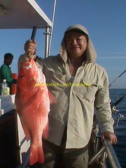 201106194 (fymac@live.com) Tags: mackerel fishing redsnapper shimano pancing angling daiwa tenggiri sarawaktourism sarawakfishing malaysiafishing borneotour malaysiaangling jiggingmaster