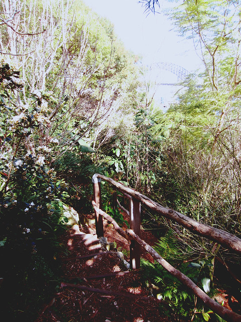 Wendy Whiteley's Secret Garden 1