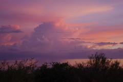Lavender storm (jimsc) Tags: sunset arizona sky storm purple desert tucson lavender monsoon rainstorm eveningsky sonorandesert thunderhead pentaxkx skycolors pimacounty