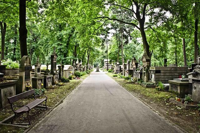 Krakow cemetery