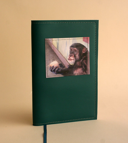 Chimp Notebook