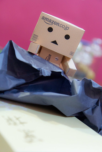 Danbo mission accomplish