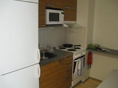 2011-4-12-finland- savonlinna -home