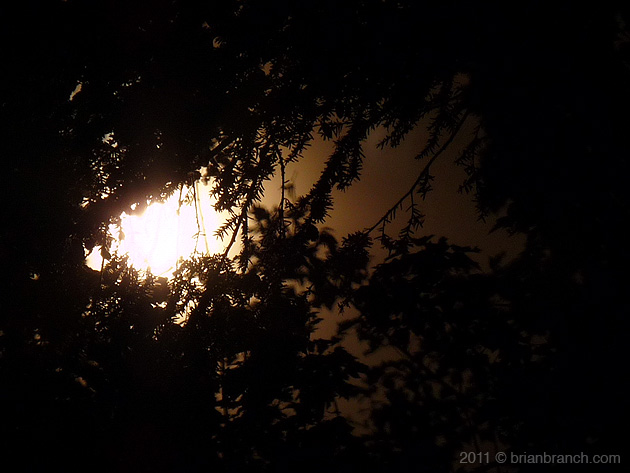 P1190023_full_moon