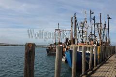 00148525 (wolfgangkaehler) Tags: usa port island unitedstates massachusetts unitedstatesofamerica northamerica fishingboats fishingboat fishingvillage northamerican fishingport marthasvineyardma menemshama