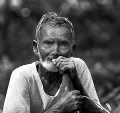 The Good Shepherd (bijoyKetan) Tags: portrait monochrome contrast high bangladesh ketan canonef70200mmf28lisusm panchagarh bijoyketan