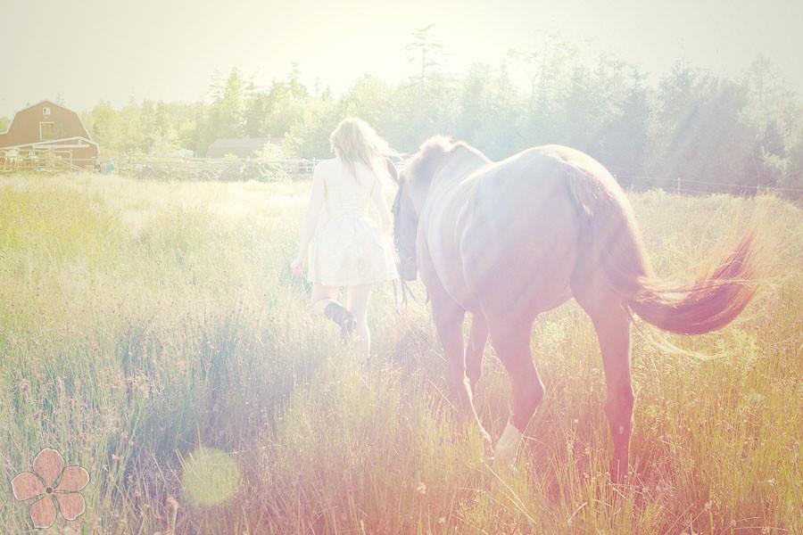 Jill + Andrea Equine Shoot _ Nicole Payzant Photography _ 9