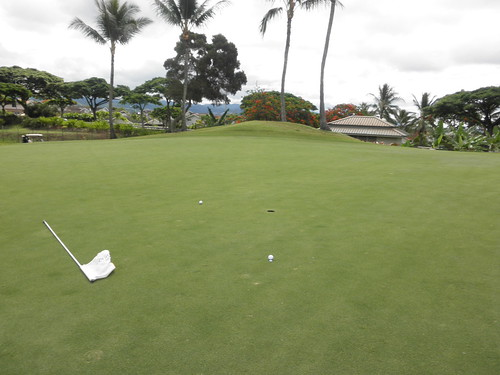 WAIKELE COUNTRY CLUB 078