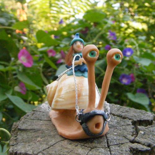 Maeve the pixie snail racer
