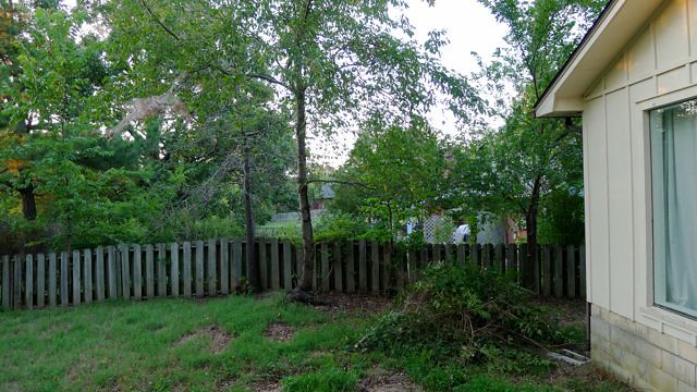 Fence Clearing