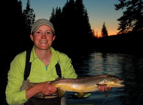 Hex Brown Trout 2
