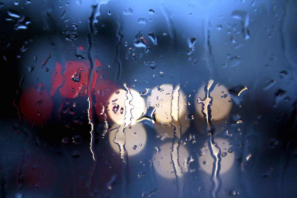 26.365 :: rain and rain and more rain