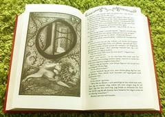 Neverending (TinaOo) Tags: book story neverending fotosondag fs110821 oandlig