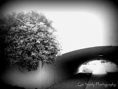 under the bridgeway (Car Smity Photography) Tags: