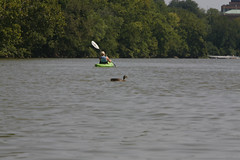 _MG_4972 (markxmas03) Tags: usa washington districtofcolumbia georgetown kayaking potomacriver teddyrooseveltisland