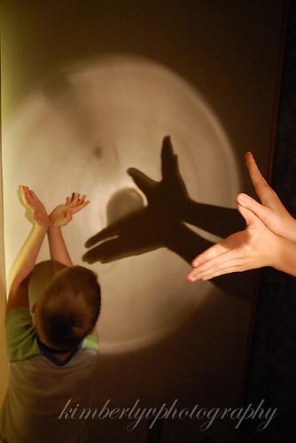 Shadow4-SOOC