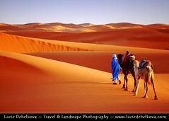 Morocco - Merzouga Sand Dunes - Man in Blue & His Camels ( Lucie Debelkova / www.luciedebelkova.com) Tags: trip travel light sunset shadow vacation panorama sunlight color colour tourism nature colors beautiful sunrise wonderful landscape outdoors gold dawn golden licht fantastic sand scenery mood colours view desert dusk lumire couleurs dunes awesome natureza dune scenic sable natuur atmosphere paisaje paisagem colores morocco beaut stunning vista outlook duna overlook paysage exploration incredible landschaft camels farbe couleur breathtaking paesaggio dne farben beautifulscenery merzouga edgeoftheworld wildnerness magiclight dramaticlight errachidia luciedebelkova wwwluciedebelkovacom