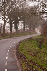 (junlal) Tags: road trees favorite mist cold holland tree classic nature netherlands fog contrast landscape countryside nevel bomen nikon nederland favorites natuur atmosphere boom romantic rough friesland countryroad dorp weg landschap koud platteland ruig klassiek landweg romantisch d90 doorkijk paasloo
