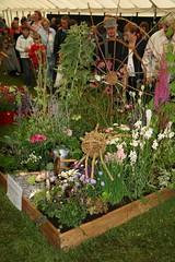 130th Sandringham Flower Show 27-07-2011 (Karen Roe) Tags: show park charity uk greatbritain england house flower church