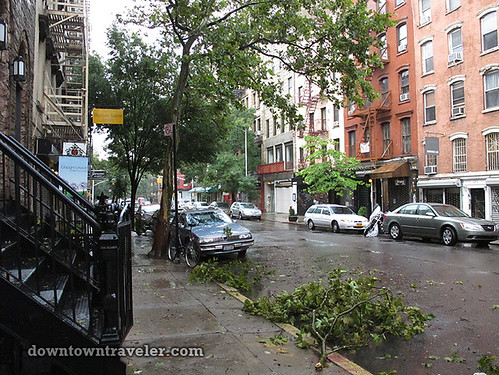 Aftermath of Hurricane Irene in NYC_East Village leaves