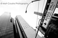 From Below (Matt Cousins Photography) Tags: city nyc newyorkcity windows sky blackandwhite bw usa ny newyork building travelling window lamp buses up sign america skyscraper buildings blackwhite streetlight downtown skyscrapers streetlamp manhattan flag streetsign unitedstatesofamerica thecity wideangle landmark frombelow lookingup lampost tall states lowdown bigapple height tallbuilding lowangle usaflag tallbuildings sigma1020mm 10mm thebigapple buslane travelphotography unitedstatesofamericaflag unitesstates newyorkbuildings towardthesky towardsthesky fromlowdown mattcousins mattcousinsphotography travellingthestates