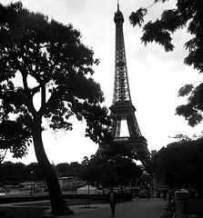 Eiffel Tower (Adam Hampton-Matthews) Tags: trees summer holiday france tree architecture steel eiffeltower engineering structure exposition champdemars engineer worldsfair holidayphotos tallestbuilding gustaveeiffel theironlady ladamedefer stephensauvestre steelarchitecture steelstrucuture