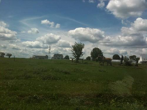 Un Amish trabajando la tierra