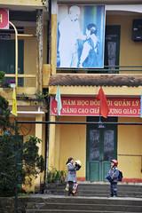 104_LAO84790015 (TC Yuen) Tags: vietnam sapa hmong terracefarming locai