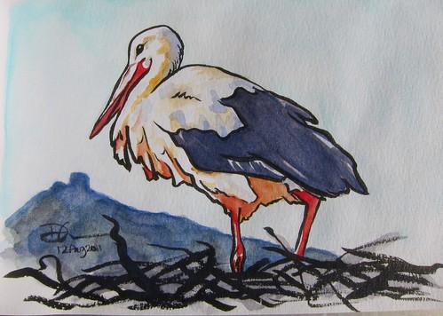 Strasbourg Stork Sketch by Danalynn C