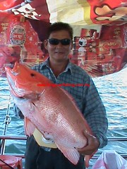 20100749 (fymac@live.com) Tags: mackerel fishing redsnapper shimano pancing angling daiwa tenggiri sarawaktourism sarawakfishing malaysiafishing borneotour malaysiaangling jiggingmaster