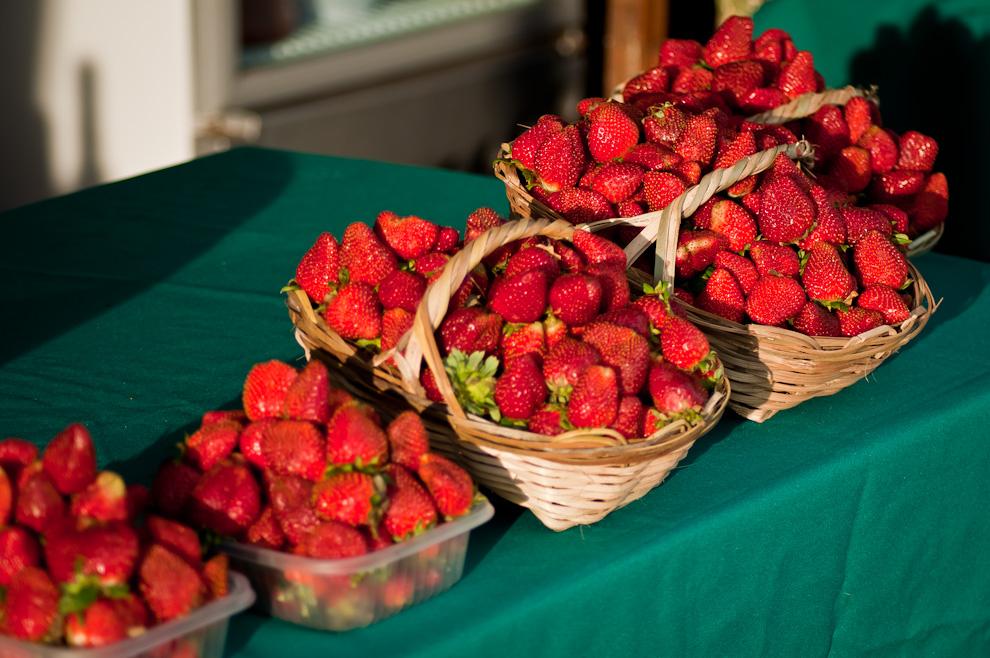 Frutillas maduras cosechadas en el día son exhibidas en uno de los stands del Festival de la Frutilla en Estanzuela en horas de la tarde. El bonito color rojizo de las frutas lucía intenso con la luz del sol. (Elton Núñez)