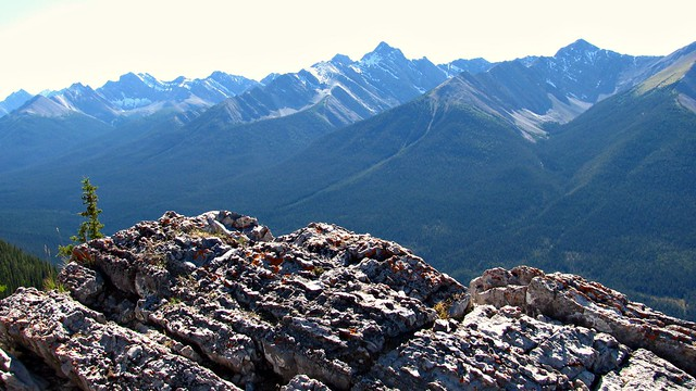 Upon on Sulphur mountain.