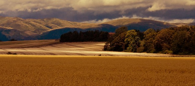 First upload...Ochil hills