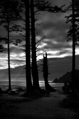 6129.2 Smugglers Cove Dusk B&W (eyepiphany) Tags: mystery oregon surf surfing godrays blackwhitephotography oregonbeaches summerlife oregonsurfing oregontourism mysterybeach manzanitta smuglerscove tappingthesource bestplacestosurf bestplacestosurfinoregon mysteriousbeach oregonbeachtowns manzanittaoregon