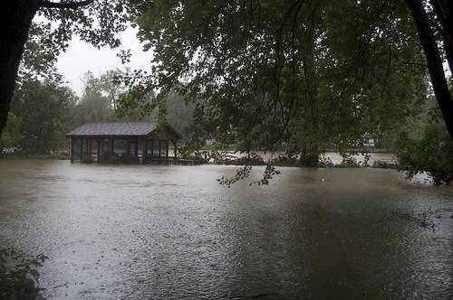 Flood D