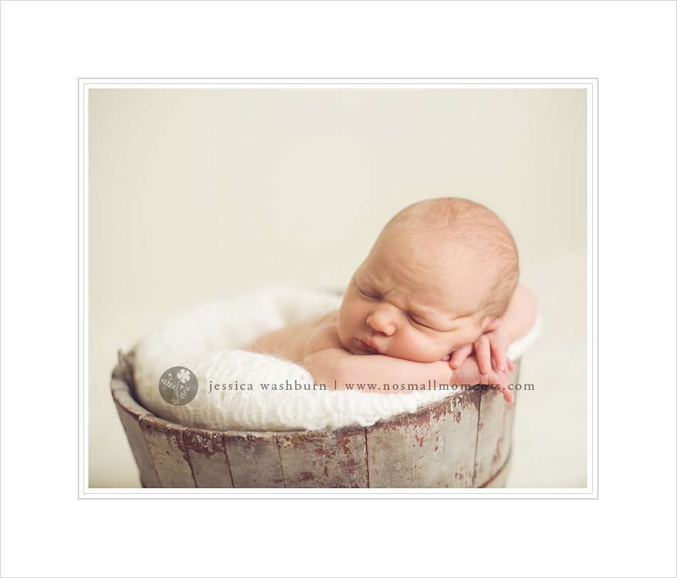 Albany-baby-photography