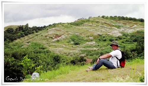 the hills at Regina Rica